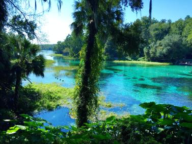 Rainbow Springs